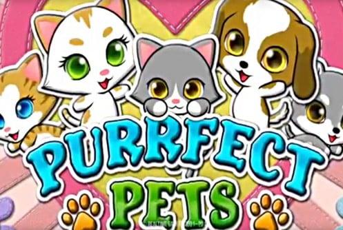 Purrfect Pets Slot Release!